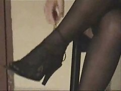 Feeds and Nylons